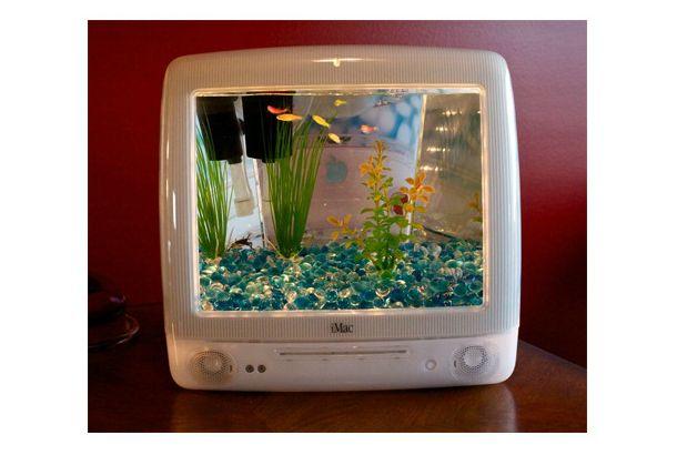 昔のiMacもけっこうグラフィックきれいだなー……なんて思ってたら、これ本物の魚だ!世間では先日発表された次世代MacBook ...