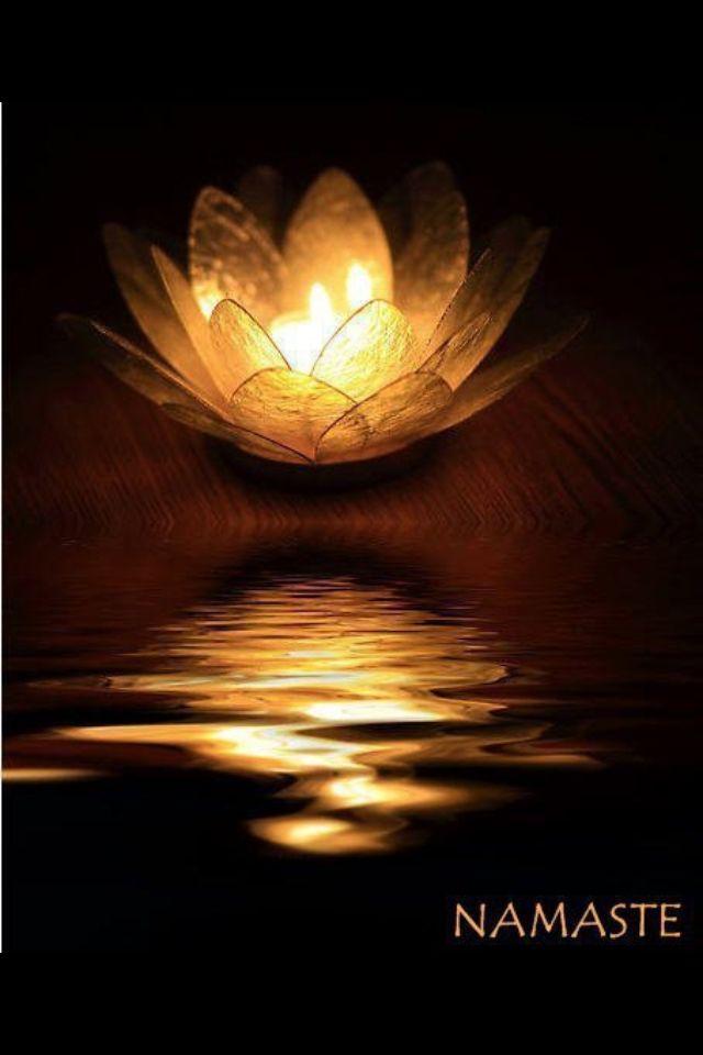 ૐ Namaste ૐ