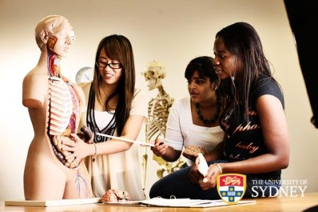 OzTREKK is proud to announce that the offers for the Sydney Medical School's 2014 intake were released last Tuesday, Aug. 6...