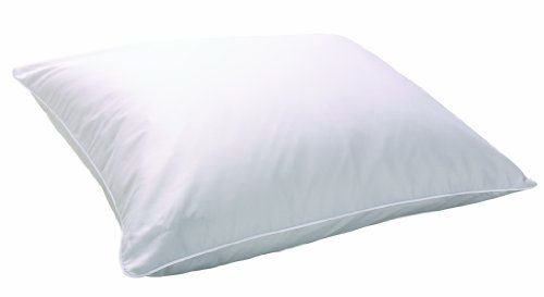 20% cut off Carpenter Sleep Better Isotonic IsoLoft Memory Fiber Bed Pillow Reviews products ...