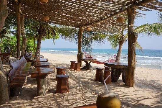 Mangrove Beach Cabanas & Chalets: Chalet Beach Bar - hammock bliss
