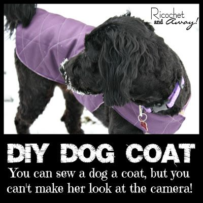 507 best Pet Sewing images on Pinterest | Dog accessories, Dog stuff ...