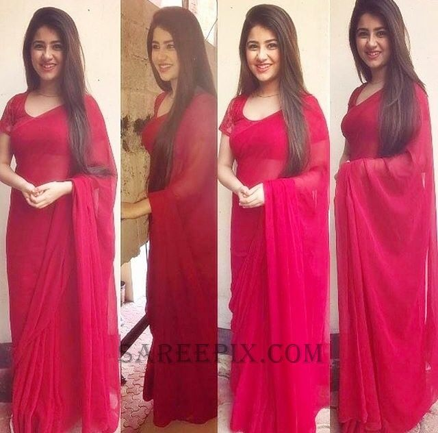 aditi-bhatia-red-transparent-saree