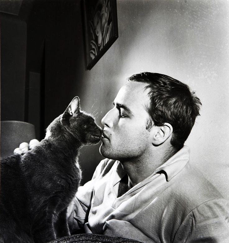 Marlon Brando and kitty share a moment, please tell me the cat is real and not a stuffed prop, please..