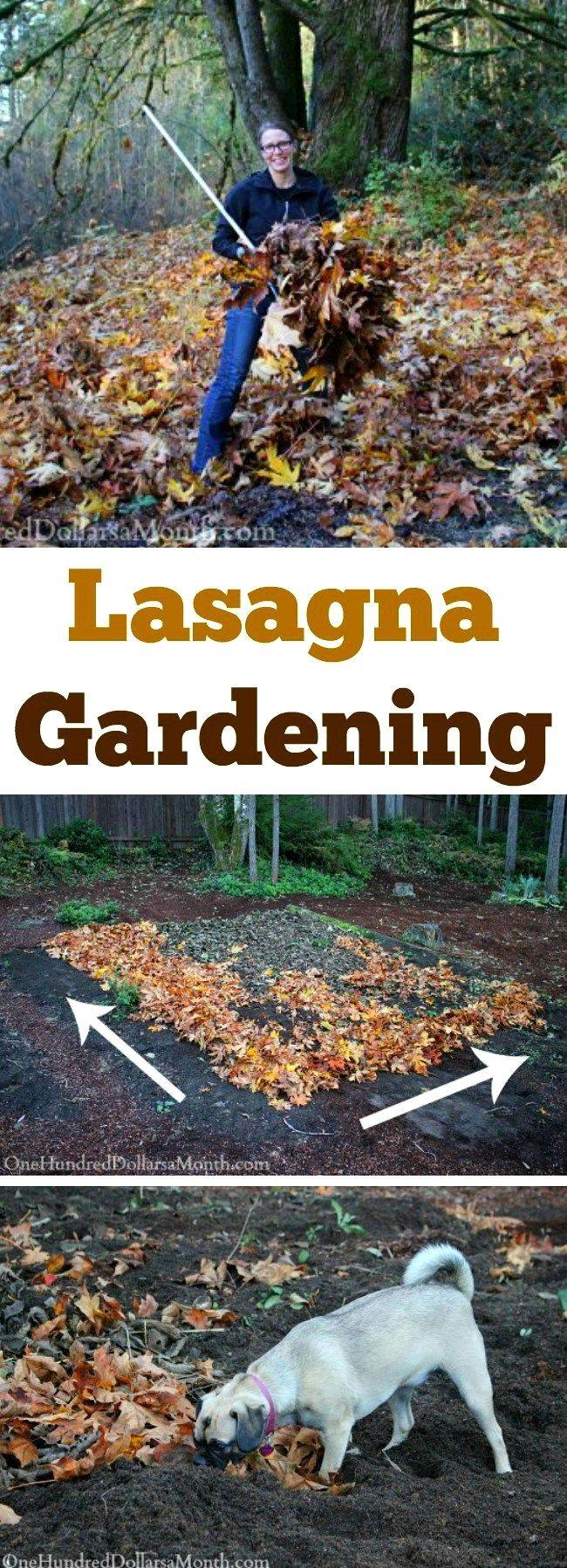 Vegetable Garden Plans Zone 7 in 2020 | Lasagna gardening ...