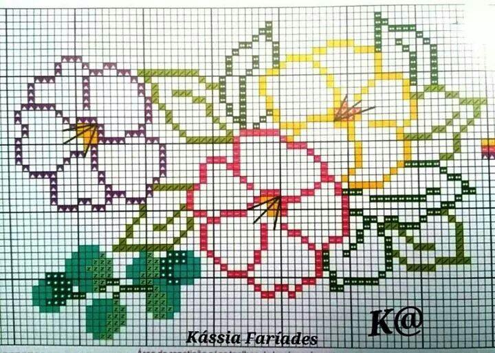 Flor43467