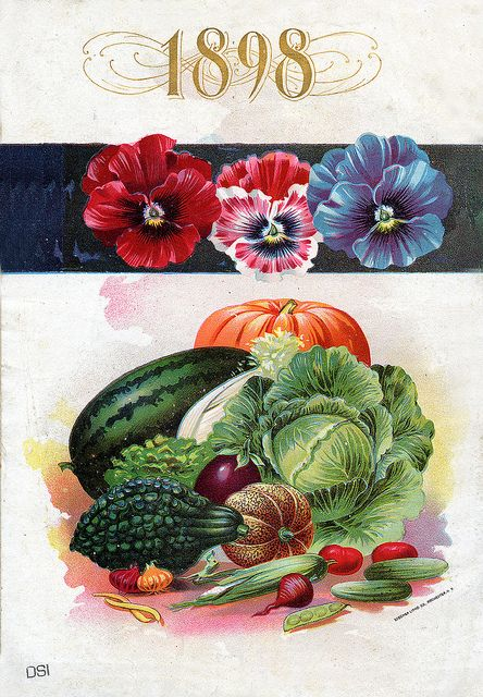 1898 vintage seed packet art with pansies and garden vegetables