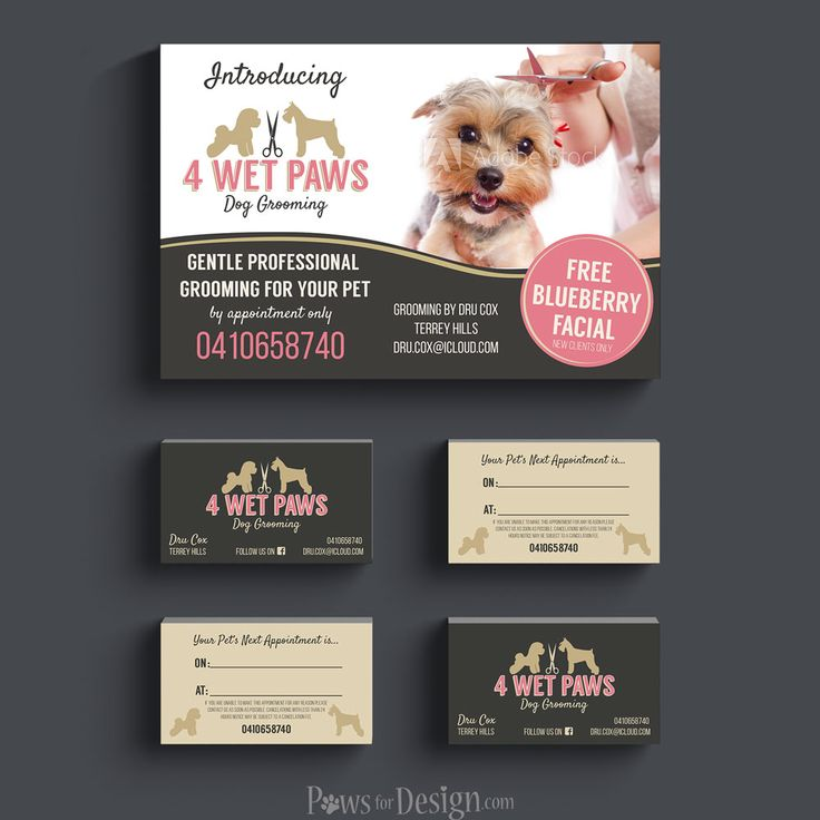 Stylish branding for a pet grooming salon including logo, business card, and flyer. All based off the premade logo linked here!