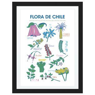 Poster Flora de Chile