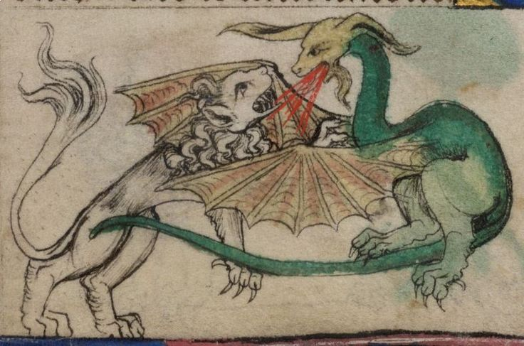 A fire breathing dragon battles a lion in folio 13r of The Taymouth Hours Yates Thomspon MS 13 Images from the British Library Manuscript website.
