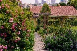 May Gibb's home and garden - Nutcote, Sydney, Australia ... Dorothy Perkin Rose Gate