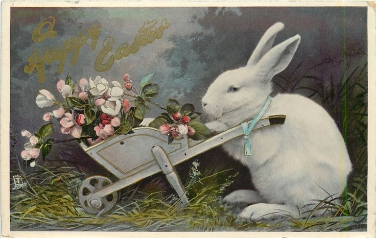 A Happy Easter Rabbit With Wheel Barrow Full Of Wild Roses