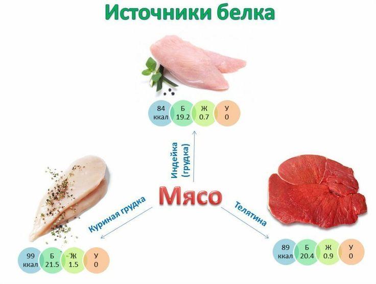 Протеины в продуктах питания — SportWiki энциклопедия