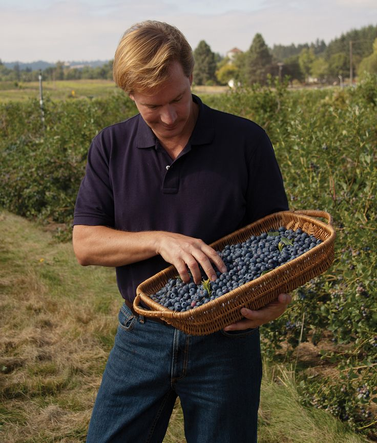 Tips for growing blueberries, raspberries, blackberries ....