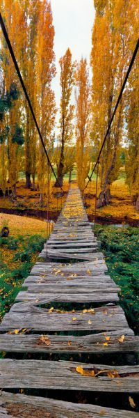 Wooden bridge, Ringwood, Victoria, Australia