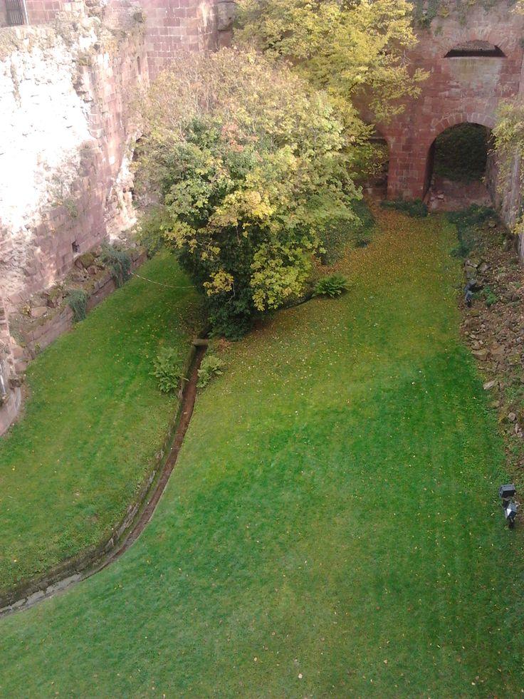 Garten von Heidelberg Schloß