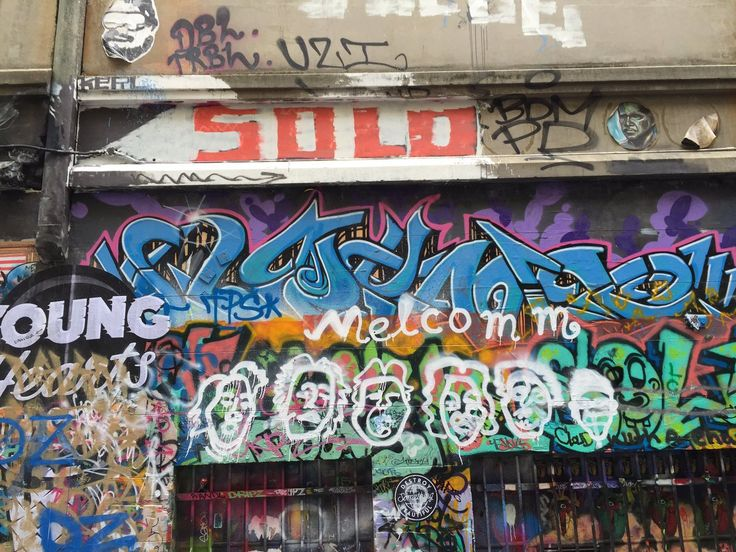 """Nicola Richards on Twitter: """"#solotaxonomy in #Melbourne - it's taking over…"""