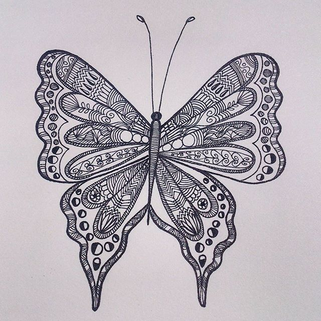 Hand drawn Butterfly - from 'Patterned animal illustration' series  #art #artwork #illustration #sketch #drawing #pattern #butterfly #design #sketchbook #penart #lineart #mystaedtler #artist #zentangle #hennadesign #doodle #india #animalart #creative #artsy #arts_help #art_spotlight #artistsoninstagram #instaartist #intricate #handdrawn #artoftheday #nature #picoftheday #animalart