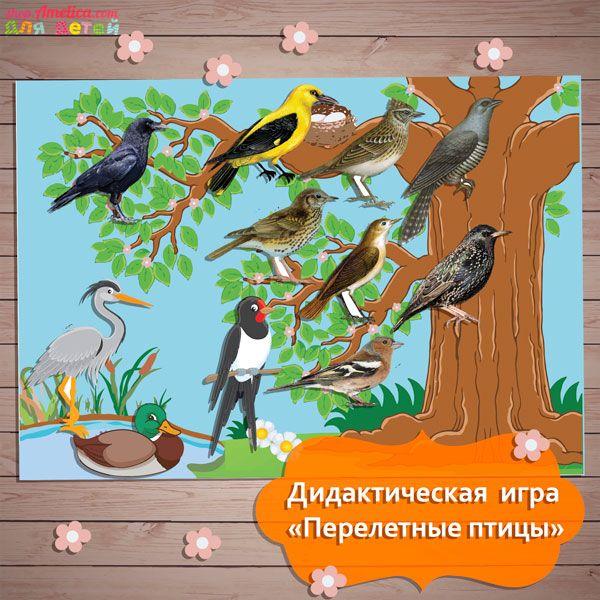 Игры в картинках про птиц