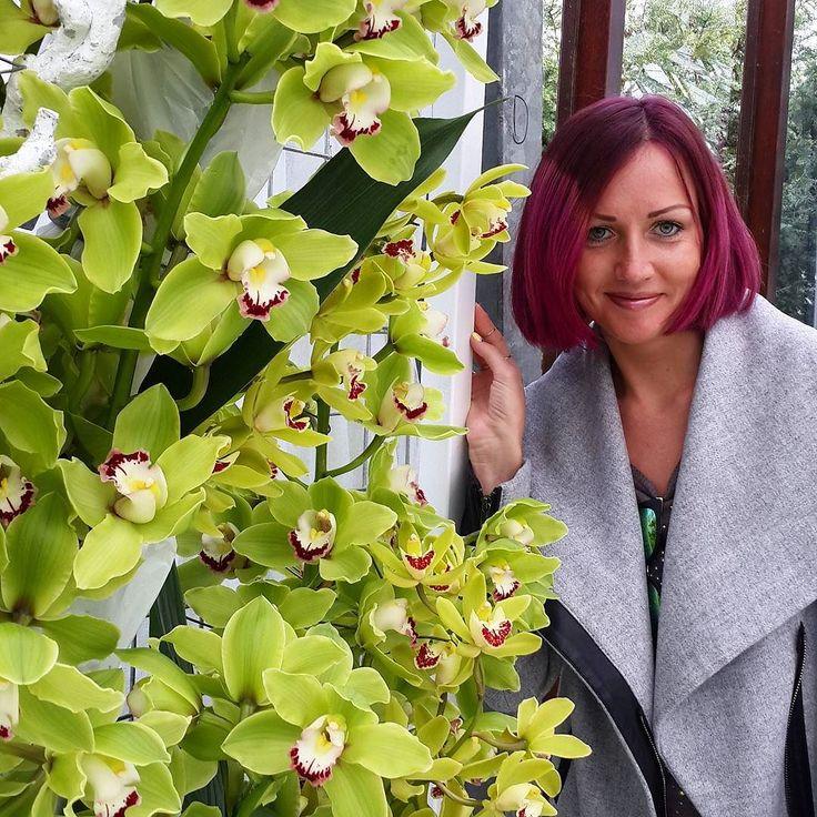 А ещё в парке несколько оранжерей где представлены разные цветы и конечно же самая впечатляющая была с орхидеями-это цветок моего имении моя тату#отпуск #holiday #vsco #vscocam #vscotravel #счастье #happy #европа #europa #евротрип #eurotrip #амстердам #amsterdam #нидерланды #niderland #путешествие #traveling #туризм #tourism #голландия #holland #цветы #flowers #орхидеи #orchids #кёкенхоф #keuкеnhof by nastialabestya