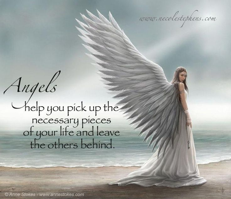 Guardian Angel Thrift - Supporting Alzheimer s Research
