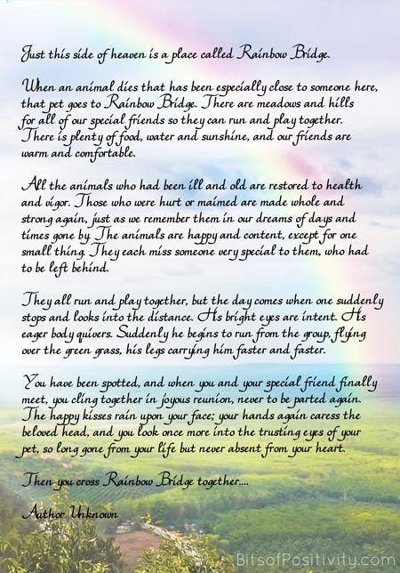 Rainbow Bridge Free Printable Poem Pet Loss Pet