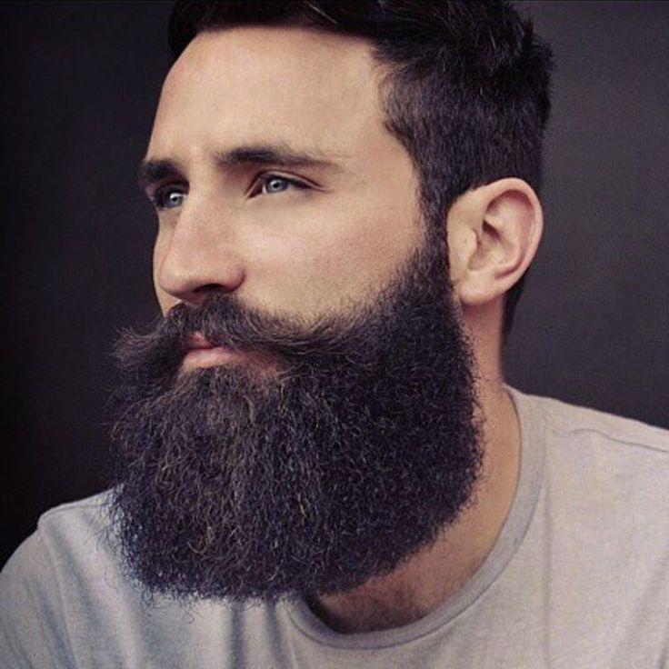 as 372 melhores imagens em awesome full beards no pinterest barba cheia barbas e barbas. Black Bedroom Furniture Sets. Home Design Ideas