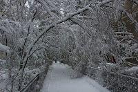 Călător pe Terra: Iarna amintirilor
