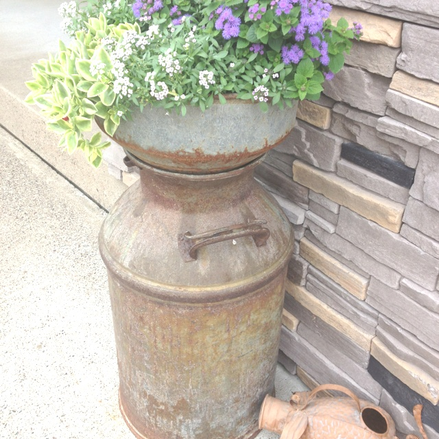 17 best images about milk cans on pinterest flower