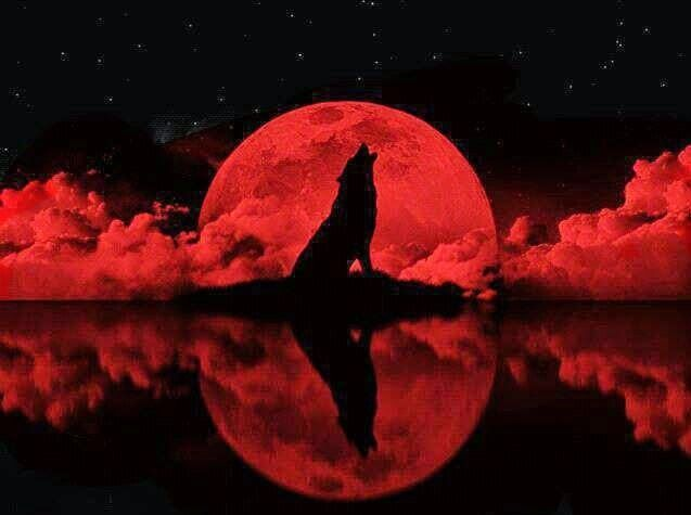 red moon hunting 2018 - photo #28
