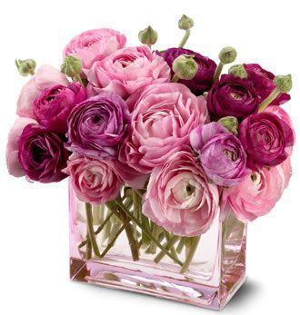 167 Fino y sensible florero de Ranunculus - Exoticas Flores :: Tu Floreria en Linea.