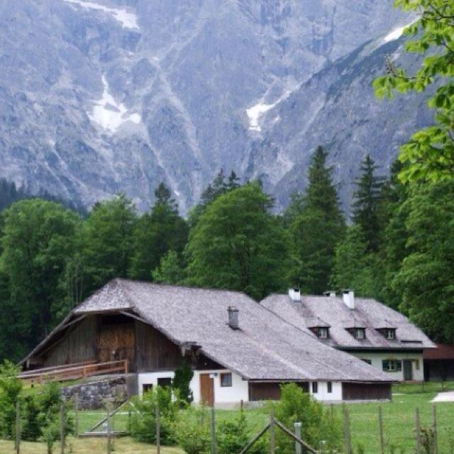 father's day austria