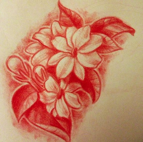 drawing of my tattoo sampaguita flowers by lindsay bugbaker tattoo ideas pinterest. Black Bedroom Furniture Sets. Home Design Ideas