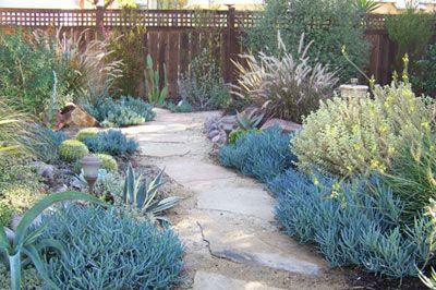 Letz Design Landscape of San Diego #landscape #garden #backyard