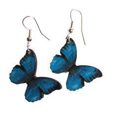 Puuperhoskorvikset, tummareunaiset siniset