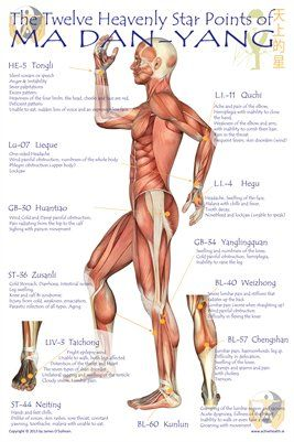 24 best health images on pinterest acupressure points the benefits of rosebud tea ccuart Gallery