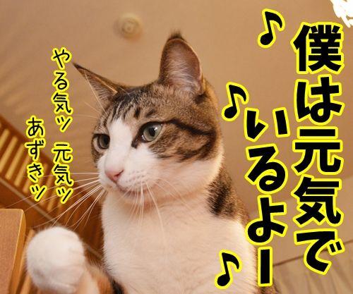 天体観測 其の二 - http://iyaiyahajimeru.jp/cat/archives/52391