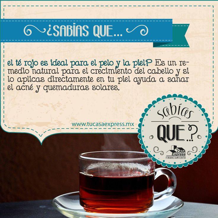 Conoce los beneficios del té rojo. #TipsExpress #Bienestar #Salud #TuCasaExpress