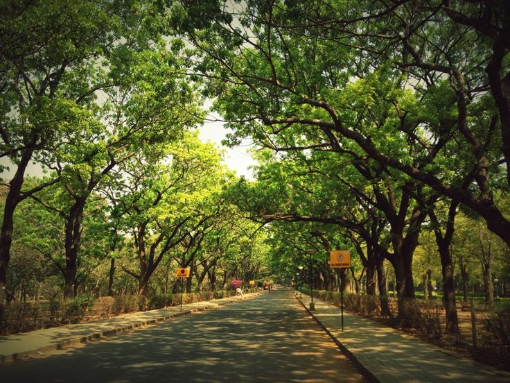 Cubbon Park in Bangalore, Karnātaka :  The Cubbon Park has a history of over 100 years. It was established in the year 1870 by Sri John Meade, the then acting Commissioner of Mysore.   http://www.horticulture.kar.nic.in/cubbon.htm