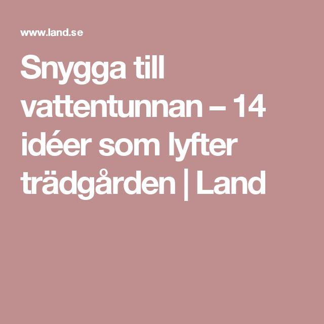 Snygga till vattentunnan – 14 idéer som lyfter trädgården | Land