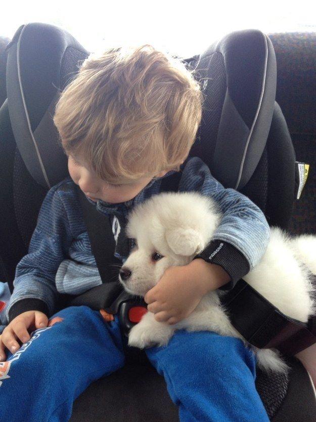 And you'll never again feel faint from fluff deprivation with cuties like these in your life.
