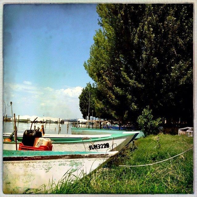 Castiglione Sul Lago #altrasimeno si pesca bene foto di @apeindiana