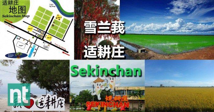 雪兰莪适耕庄(Sekinchan)之一日游好去处