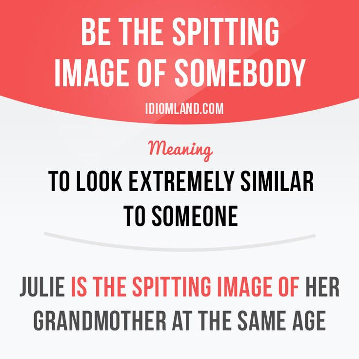 Be the spitting image of somebody