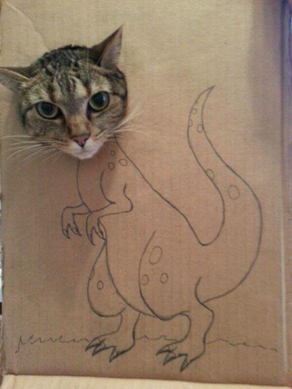 cat-raptor!