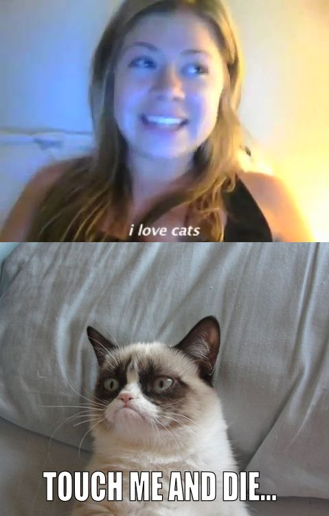 Grumpy Cat: omg!!! Crazy cat lady!! I love cats. Can't hug every cat