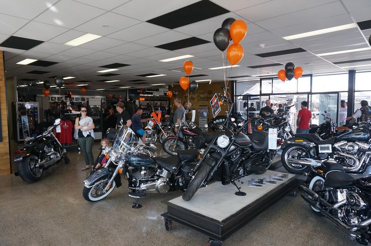 Gold Coast Harley-Davidson grand opening. Read all about it at http://motorbikewriter.com/harley-883-iron-dealership/