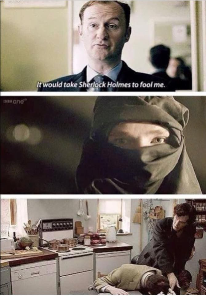 It would take Sherlock Holmes to fool Mycroft Holmes.