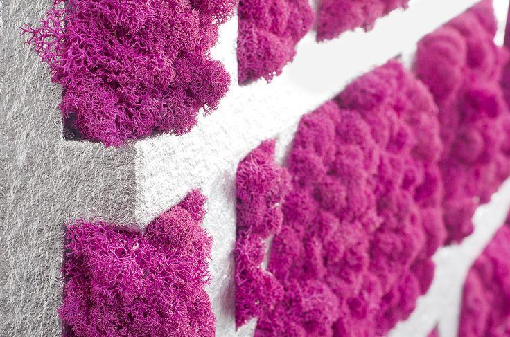 Naturalny mech na ściany - MOSS TREND dostępny w wielu kolorach w BandIt Design. Więcej informacji: www.facebook.com/banditdesignofficial #mech #moss #decor #design #dekoracjaścian