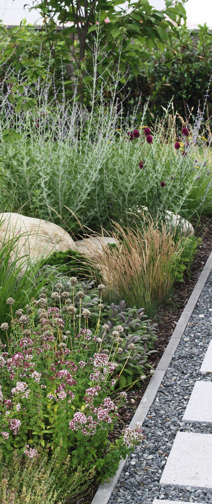 přírodní výsadby / natural plants